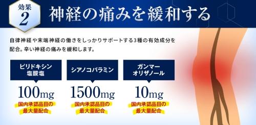 効果2)神経の痛みを緩和する(アユミンS)