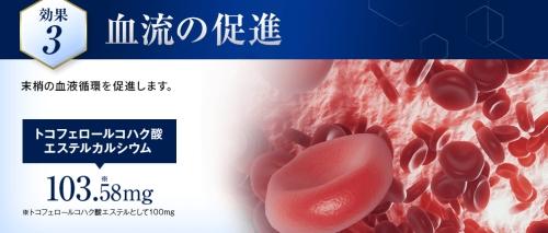 効果3)血行の促進(アユミンS)
